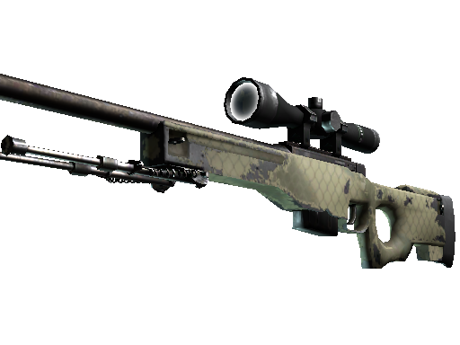 AWP | Maillage safari (Usée)