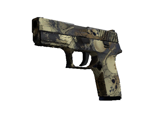 P250 | Contamination (Usée)