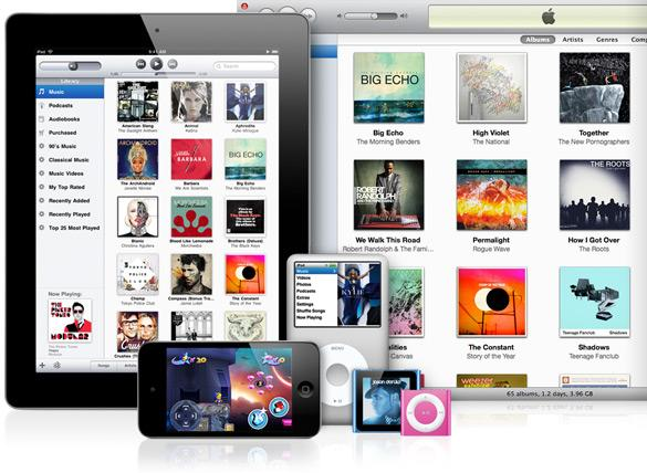 Carte-cadeau iTunes $15 Screenshot 1