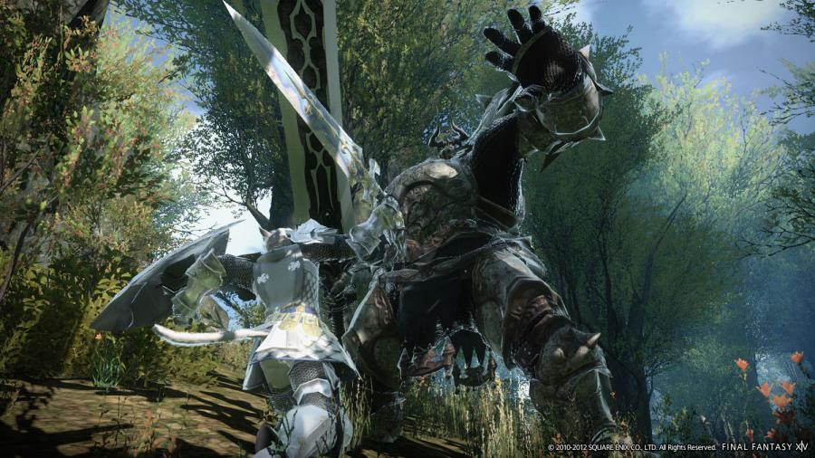 Final Fantasy XIV A Realm Reborn Screenshot 1