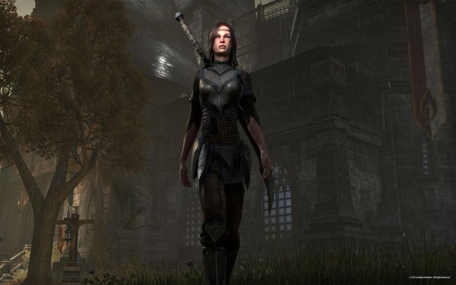 The Elder Scrolls Online - Carte prépayée 60 jours Screenshot 8