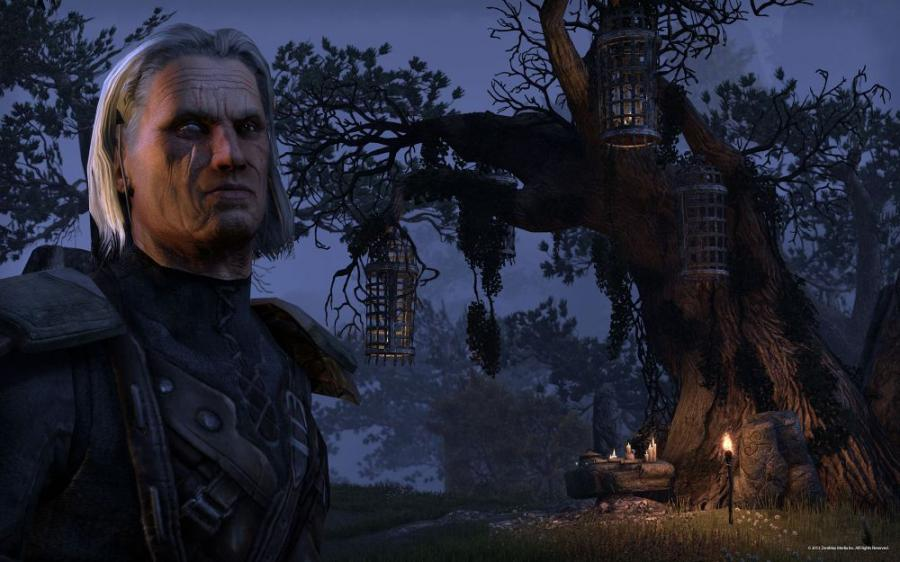 The Elder Scrolls Online - Carte prépayée 60 jours Screenshot 4