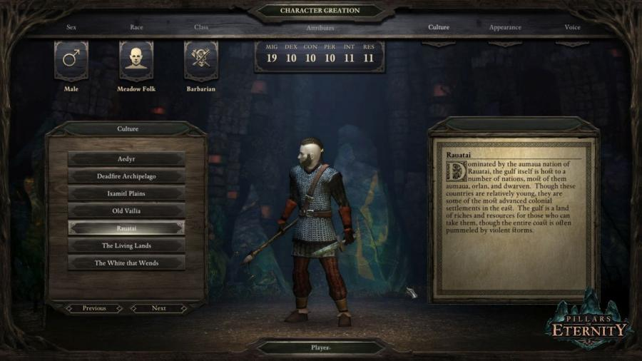 Pillars of Eternity - Champion Edition Screenshot 4