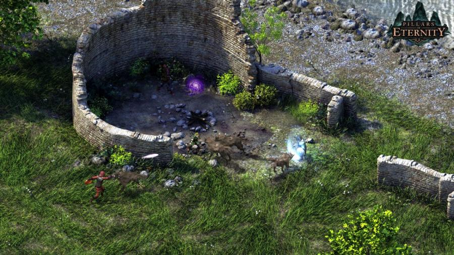 Pillars of Eternity - Champion Edition Screenshot 5